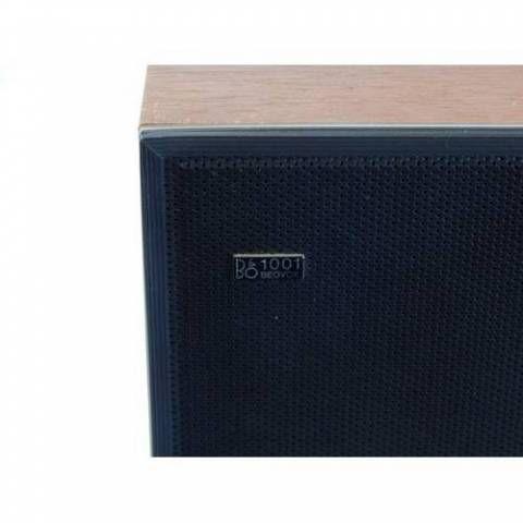 BeoVox 1001 Passive Loudspeaker